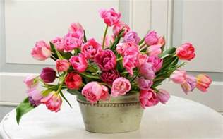 beautiful bouquet of flowers most beautiful flowers wallpapers hd flowers wallpapers hd wallpapers images pictures