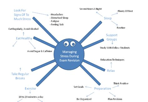 Spider Diagram For Essay Planning by Spider Diagram Managing Stress During Revision Gcse Psychology Marked By Teachers