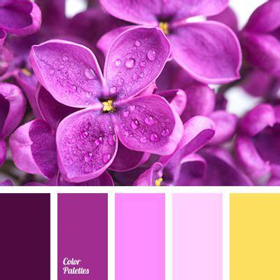 images  color palette  pinterest paint