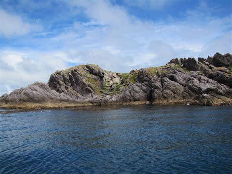 escape to an island trip to albatross island