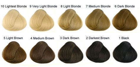 hair color numbers international colour charts for hairdressing hair and