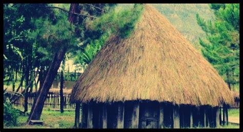 rumah adat papua nama ciri khas gambar  penjelasan