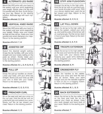weider home workout plan free