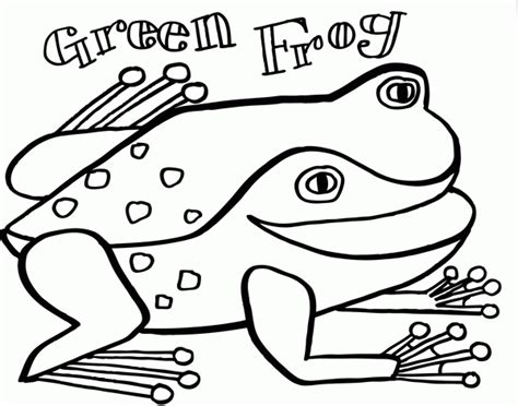 green frog coloring page the green frog eric carle coloring page coloring home