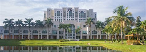 Fiu International Mba Application by Top 10 Bachelor In Business Administration Degrees