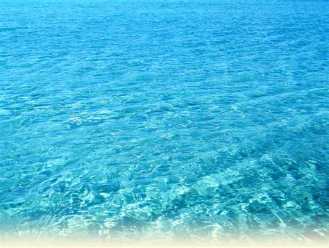boat cruise rarotonga rarotonga cruises captain tama s lagoon cruizes muri