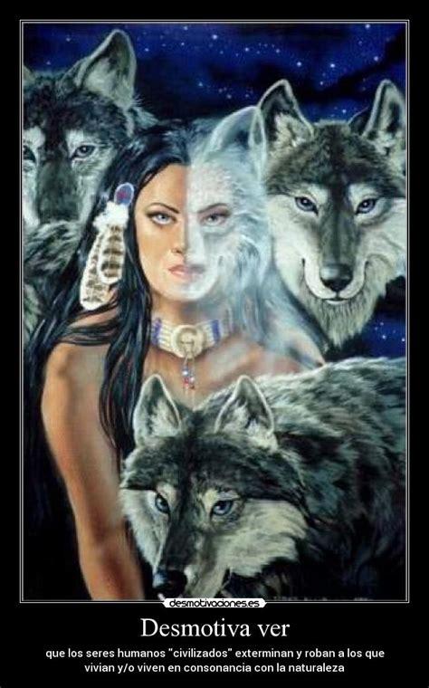im 225 genes de un lobo gris im 225 genes y fotos imagenes de indios americanos con lobos im 225 genes y
