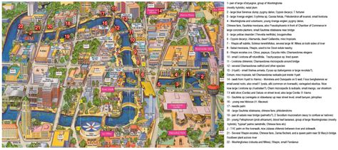 map of downtown san antonio texas san antonio riverwalk map map2