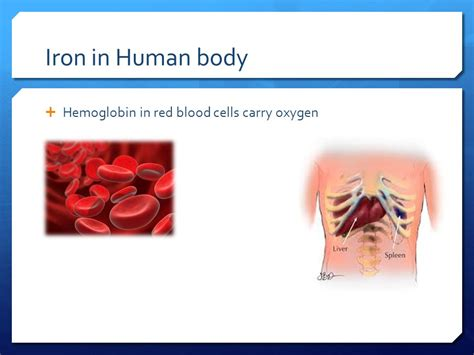 Iron In Blood iron deficiency anemia ppt