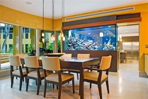 design your home by yourself how to design your homely fish aquarium by yourself and