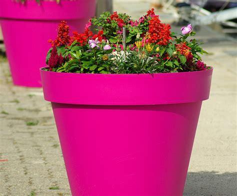 pot de fleur plastique 3983 de la couleur avec les pots de fleurs et jardini 232 res en