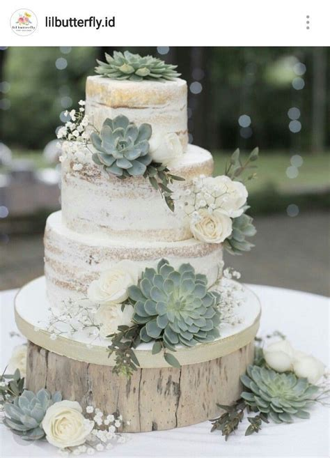 Naked succulent cake   Dylan's Baptism ideas in 2019