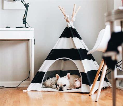 hacer camas 5 ideas para hacer camas para perros en tu propia casa