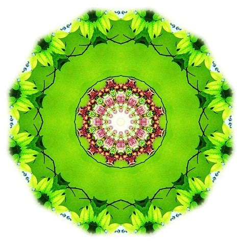 imagenes de mandalas verdes los cursos de circe mandala color verde cuarto chakra lc 5