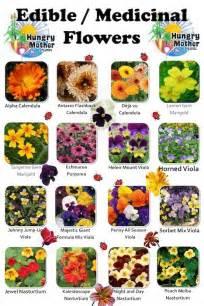 edible plants chart www pixshark com images galleries