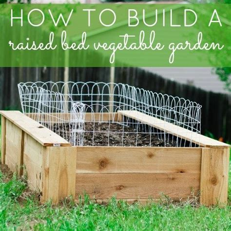 how to build a raised vegetable garden how to build your own raised bed garden apps directories