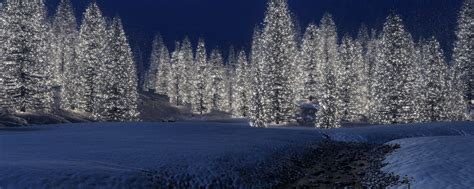 new year snow wallpaper 2560x1024 new year trees snow dual