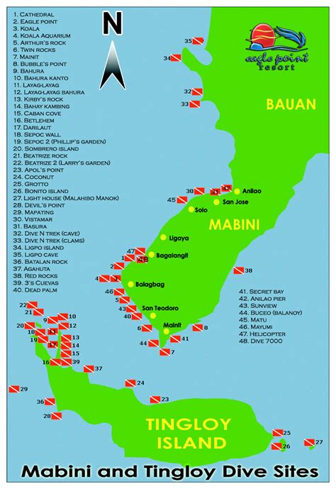 dive packages diving packages anilao diving resort