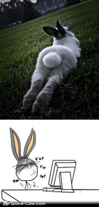 Bugs Bunny Meme - pin by terri tyson on memes for julia pinterest