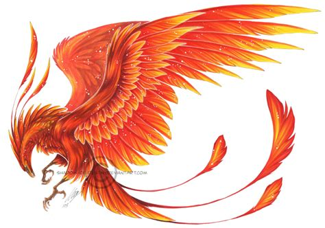 phoenix wings tattoo designs deviantart more collections like on arm by