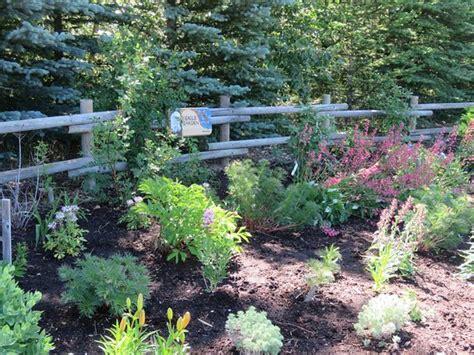 Botanical Gardens Calgary Botanical Gardens Of Silver Springs Calgary Canada Top Tips Before You Go With Photos