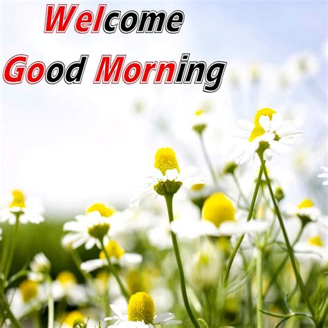 good morning love greetings lovely widescreen romantic good morning love and images