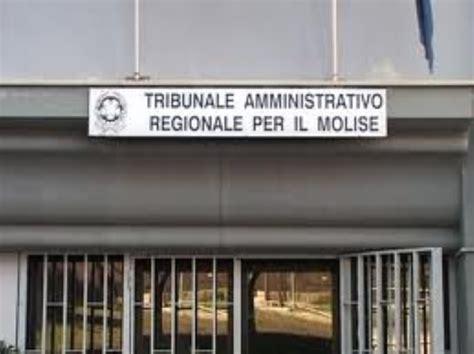 ufficio scolastico molise gravi irregolarit 224 tar molise annulla prova per presidi