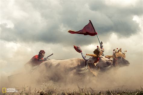 contest for 2015 national geographic photo contest 2015 see 10 inspiring