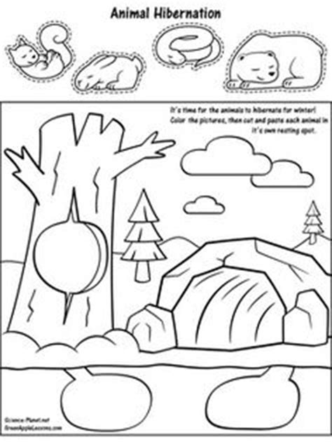 kindergarten activities hibernation parts of a pond worksheet google search science and
