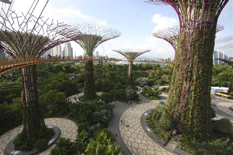 singapore botanic gardens marina bay gardens by the bay