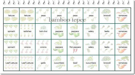 Companion Gardening Layout Design S On Pinterest Companion Planting Square Foot Gardening And