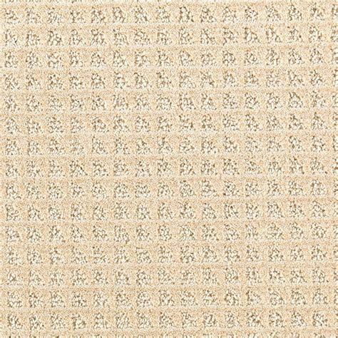 home decorators collection carpet sle wholehearted ii color vanilla frost twist 8 in x 8 home decorators collection wholehearted ii color vanilla