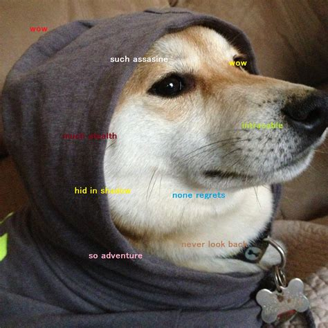 Know Your Meme Doge - image 582644 doge know your meme