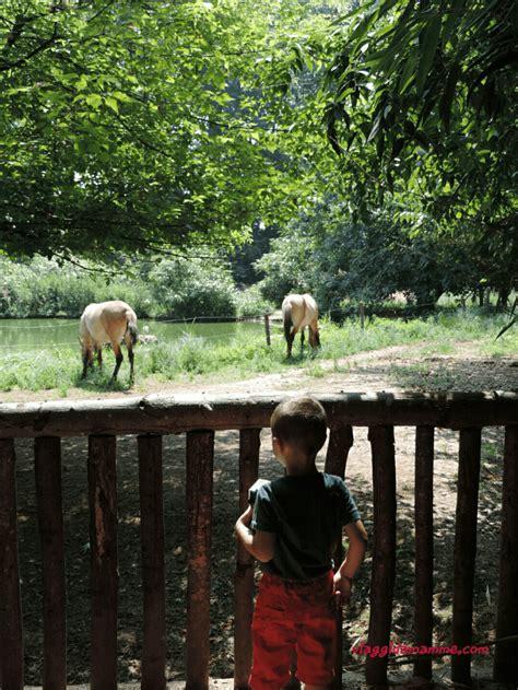 gita fuori porta bambini gita fuori porta alloasi santalessio foto 4 viaggi da mamme