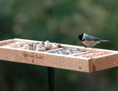 wild birds unlimited wild birds and bird feeders on pinterest