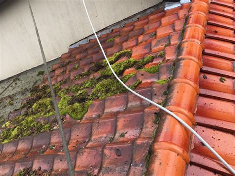 tile roof cleaning portland portland roof cleaning