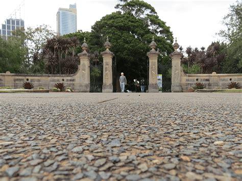 Royal Botanic Gardens Tour Photos From Smsa S Royal Botanic Gardens Tour Sydney
