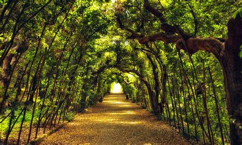 firenze giardini di boboli giardino di boboli