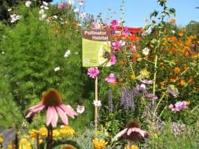 planting a bee garden gardens at lake merritt