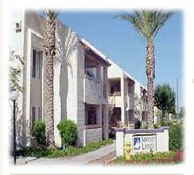 Thunderbird Apartments Glendale Az Coves At Newport Apartments 5205 W Thunderbird Rd