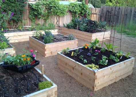 Organic Vegetable Garden Installation Minifarmbox Organic Vegetable Gardening