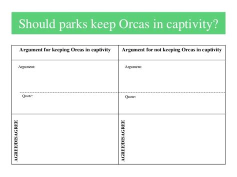 Orcas In Captivity Essay by Killer Whale Persuasive Essay