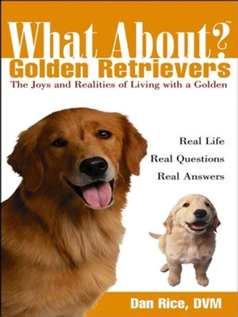 how do golden retrievers live for what about golden retrievers by daniel rice dvm 183 overdrive rakuten overdrive