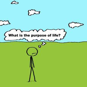 The Purpose Of Feb 27 10