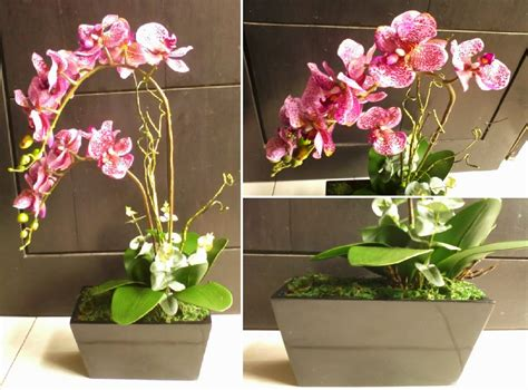 Bunga Anggrek Cattleya Artificial Tanaman Plastik Hias Dekorasi pondok dahar lauk jogja maret 2014