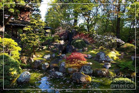 san francisco golden gate park japanese tea garden 2