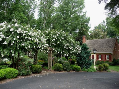 country driveway garden ideas landscape traditional