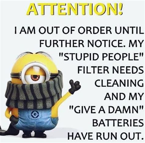 Funny Stupid People Memes - new minions quotes of the week