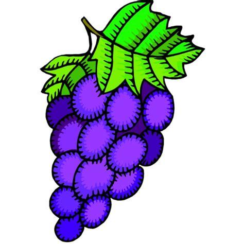 Immagini Di Uva disegno di uva a colori per bambini