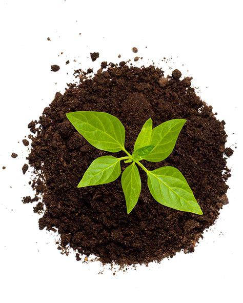 banca gruppo bper la sostenibilit 224 sociale gruppo bper bper banca
